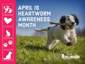 APRIL HEARTWORM AWARENESS MONTH 2021